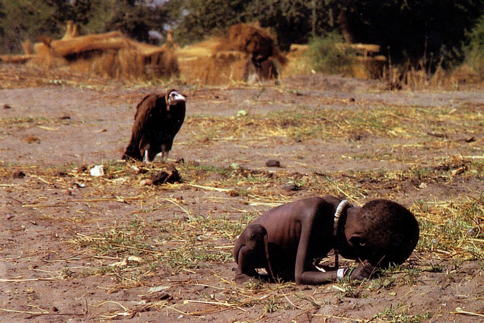 Kevin Carter Vulture Stalking a Child