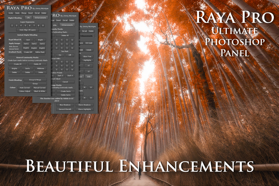 RAYA Pro the complete digital blending panel is here