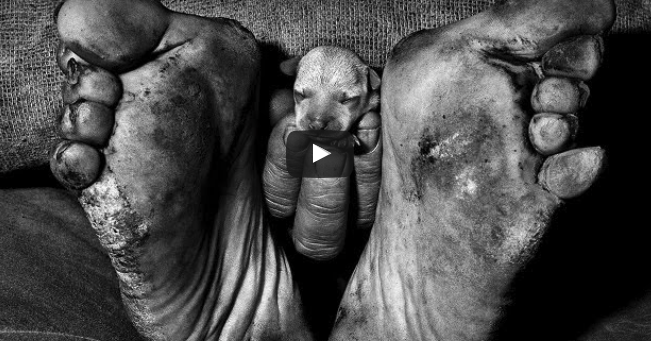 You May Be A Photographer, But Are You An Artist? (video)