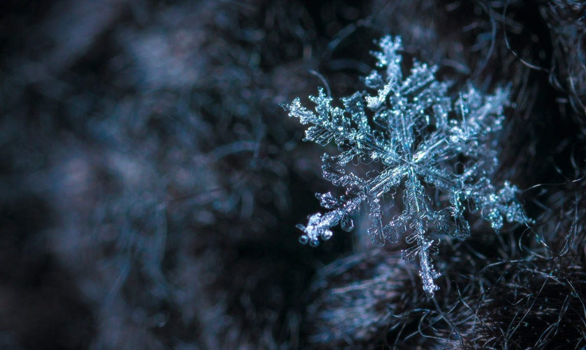 How to Photograph snow flakes complete guide from start to finish